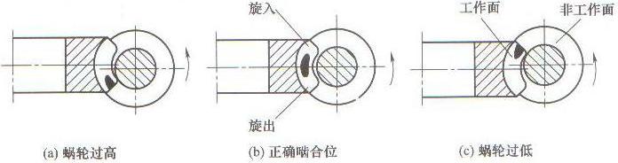 (2)拆下电动机,取出联轴器,拧下蜗杆轴承压紧螺母,将轴承盖,轴承